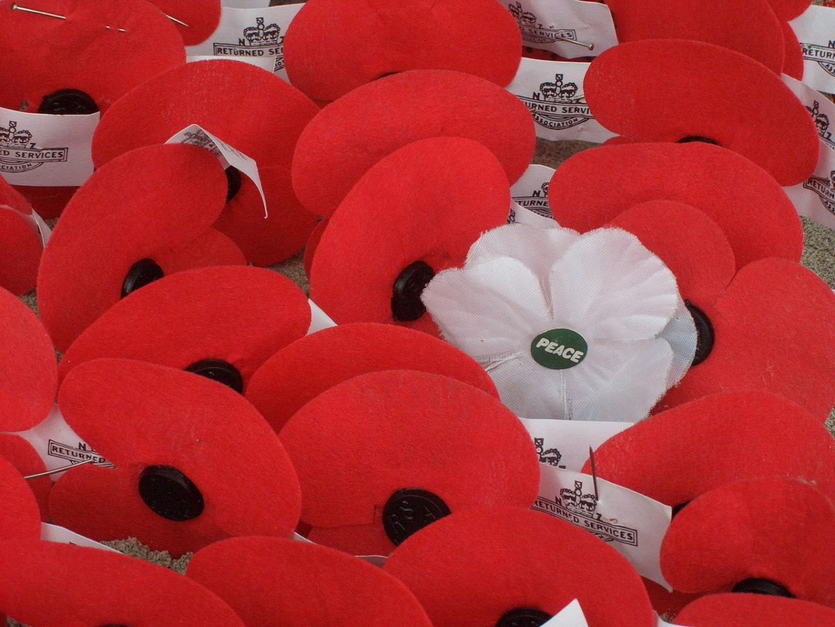 White Poppy Is A Symbol Of Peace And Remembrance The Dialog
